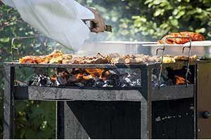 Barbecues à bois